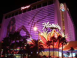 Flamingo_Hotel cloud computing