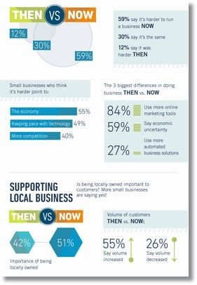 small business infographic of 2013 small biz survey